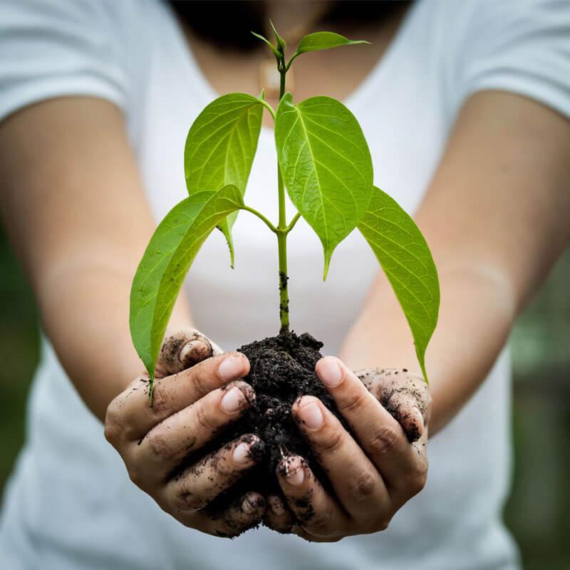 Was ist ein ökologisches Waschmittel?
